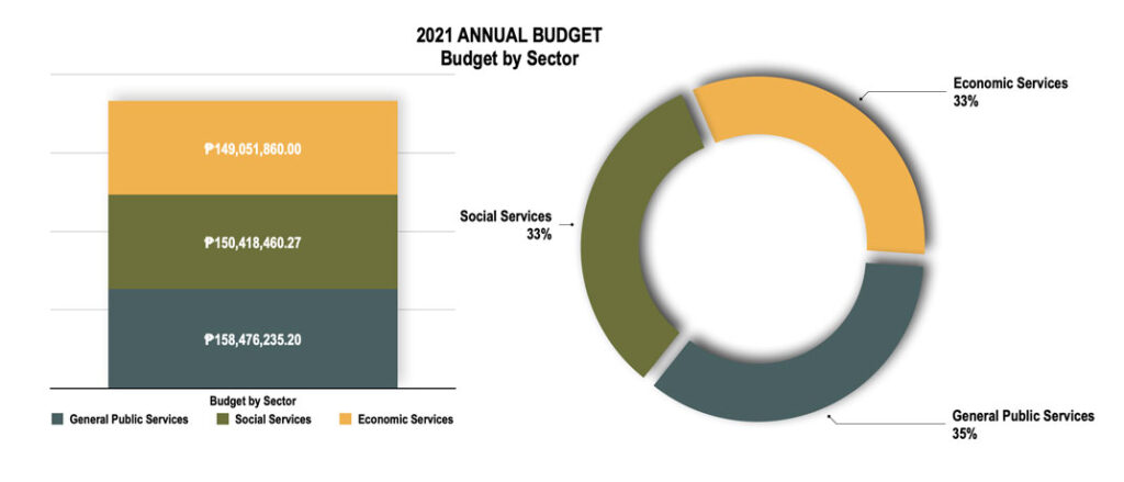 san-vicente-palawan-Budget-by-Sector
