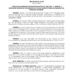 san-vicente-palawan-amended-travel-guidelines